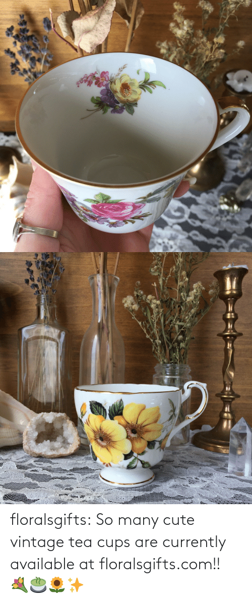shop: floralsgifts:  So many cute vintage tea cups are currently available at floralsgifts.com!! 💐🍵🌻✨