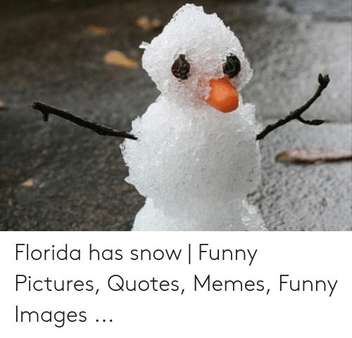 🦅 25+ Best Memes About Snow Funny Pictures | Snow Funny ...