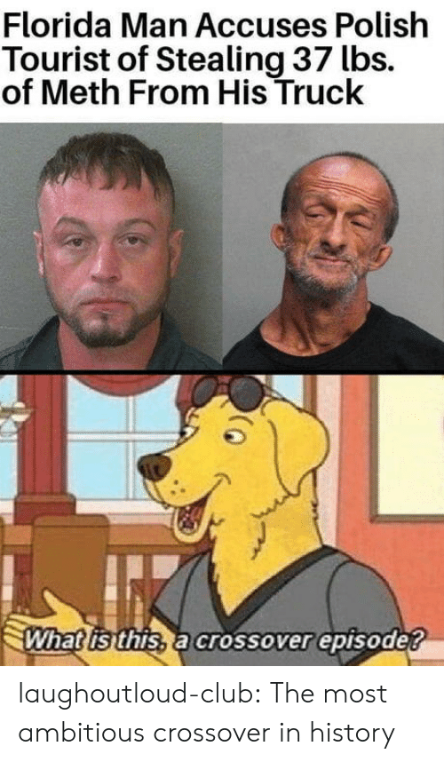 Tourist: Florida Man Accuses Polish  Tourist of Stealing 37 lbs.  of Meth From His Truck  What isthis, a crossover episode? laughoutloud-club:  The most ambitious crossover in history