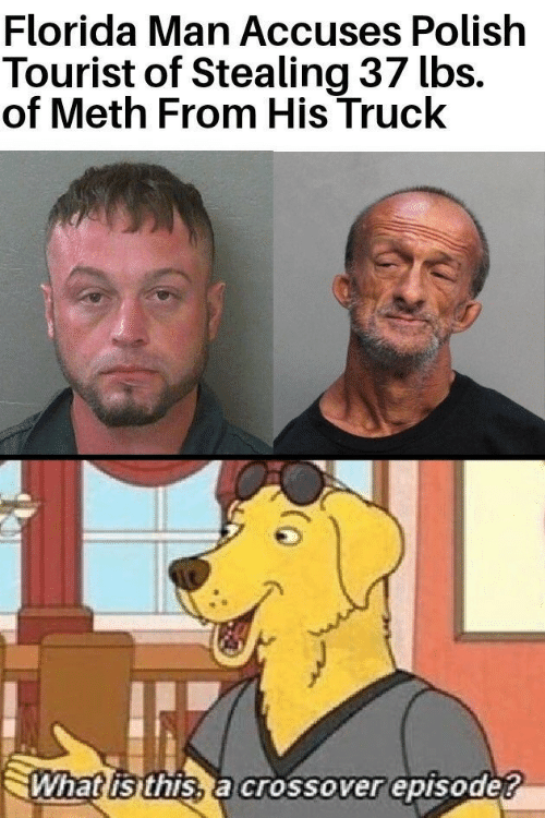 polish: Florida Man Accuses Polish  Tourist of Stealing 37 lbs.  of Meth From His Truck  What isthis, a crossover episode?