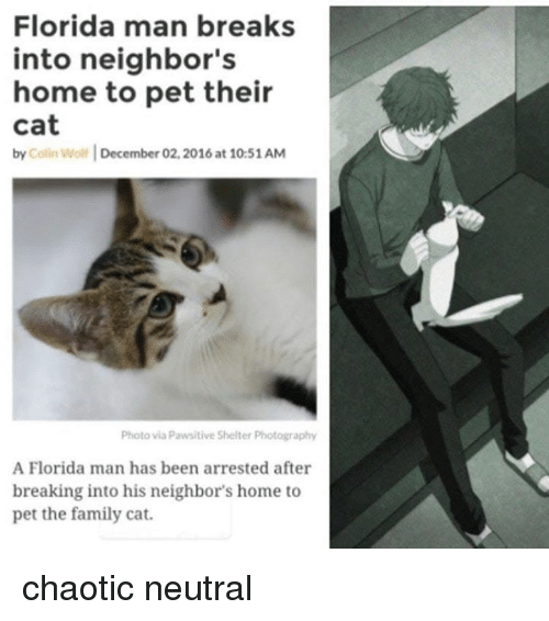 Family, Florida Man, and Florida: Florida man breaks  into neighbor's  home to pet their  cat  by Colin Wolf December 02,2016 at 10:51AM  Photo via Pawsitive Shelter Photography  A Florida man has been arrested after  breaking into his neighbor's home to  pet the family cat. chaotic neutral