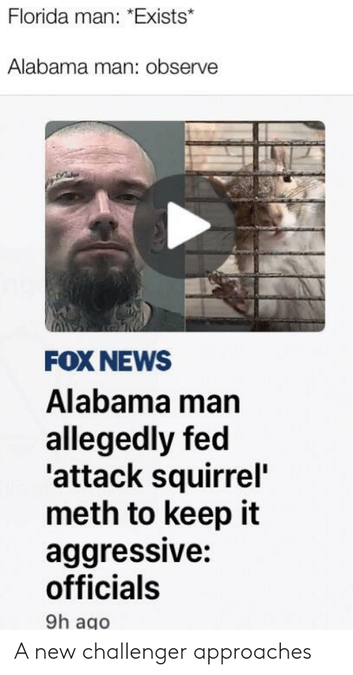 Florida Man, News, and Reddit: Florida man: *Exists*  Alabama man: observe  FOX NEWS  Alabama man  allegedly fed  'attack squirrel  meth to keep it  aggressive:  officials  9h ago A new challenger approaches