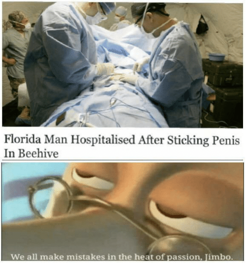 Mistakes: Florida Man Hospitalised After Sticking Penis  In Beehive  We all make  mistakes in the heat of passion, Jimbo.