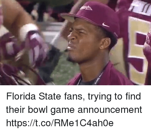 Sports, Florida, and Florida State: Florida State fans, trying to find their bowl game announcement https://t.co/RMe1C4ah0e