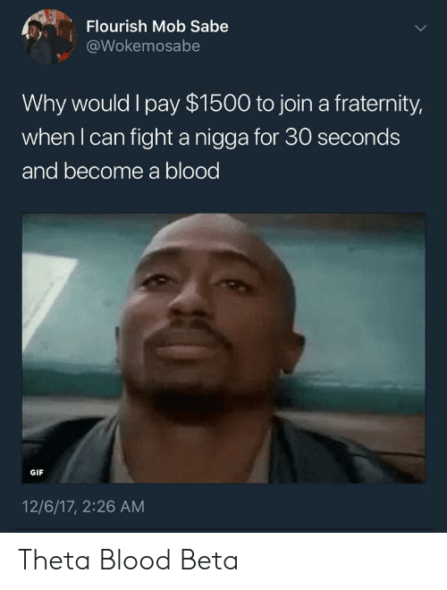 Fraternity, Gif, and Fight: Flourish Mob Sabe  @Wokemosabe  Why would l pay $1500 to join a fraternity,  when l can fight a nigga for 30 seconds  and become a blood  GIF  12/6/17, 2:26 AM Theta Blood Beta