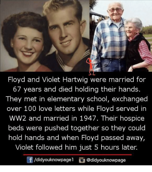 Anaconda, Love, and Memes: Floyd and Violet Hartwig were married for  67 years and died holding their hands.  They met in elementary school, exchanged  over 100 love letters while Floyd served in  WW2 and married in 1947. Their hospice  beds were pushed together so they could  hold hands and when Floyd passed away,  Violet followed him just 5 hours later.  f /didyouknowpagel  G @didyouknowpage