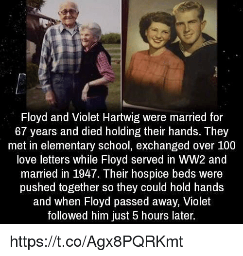 Anaconda, Love, and School: Floyd and Violet Hartwig were married for  67 years and died holding their hands. They  met in elementary school, exchanged over 100  love letters while Floyd served in WW2 and  married in 1947. Their hospice beds were  pushed together so they could hold hands  and when Floyd passed away, Violet  followed him just 5 hours later. https://t.co/Agx8PQRKmt