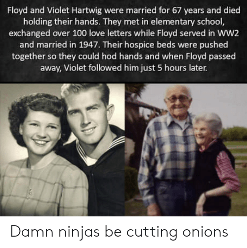 Anaconda, Love, and School: Floyd and Violet Hartwig were married for 67 years and died  holding their hands. They met in elementary school  exchanged over 100 love letters while Floyd served in WW2  and married in 1947. Their hospice beds were pushed  together so they could hod hands and when Floyd passed  away, Violet followed him just 5 hours later Damn ninjas be cutting onions