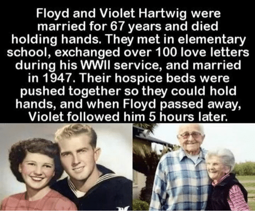 Love, Memes, and School: Floyd and Violet Hartwig were  married for 67 years and died  holding hands. They met in elementary  school, exchanged over 100 love letters  during his  WWIl service, and married  in 1947. Their hospice beds were  pushed together so they could hold  hands, and when Floyd passed away,  Violet followed him 5 hours later.