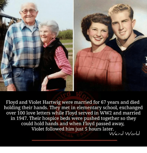 Memes, Weird, and Elementary: Floyd and Violet Hartwig were married for 67 years and died  holding their hands. They met in elementary school, exchanged  over 100 love letters while Floyd served in WW2 and married  in 1947. Their hospice beds were pushed together so they  could hold hands and when Floyd passed away,  Violet followed him just 5 hours later.  Weird World