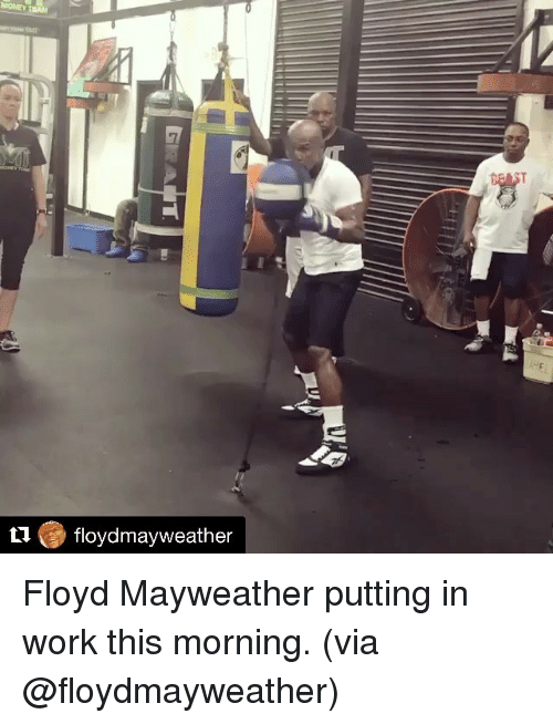 Floyd Mayweather, Mayweather, and Sports: floydmayweather Floyd Mayweather putting in work this morning. (via @floydmayweather)