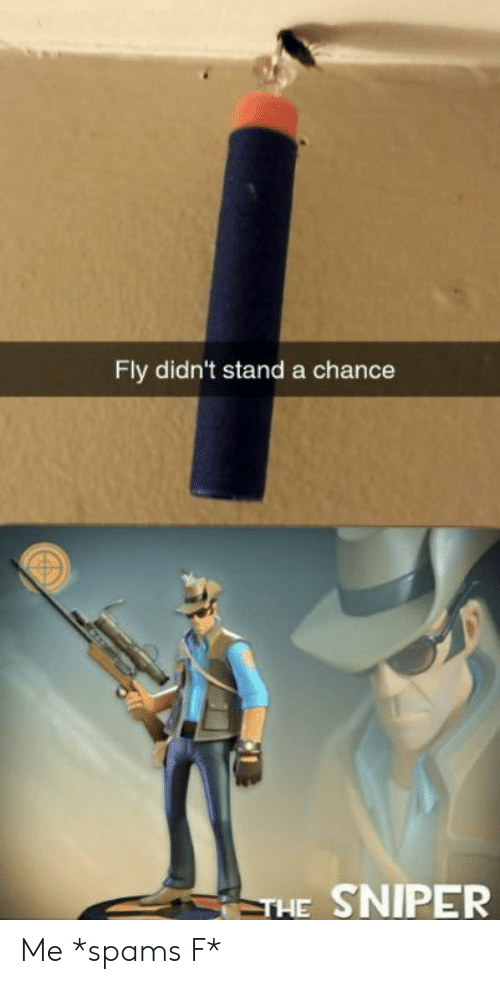 Sniper, Fly, and Chance: Fly didn't stand a chance  THE SNIPER Me *spams F*