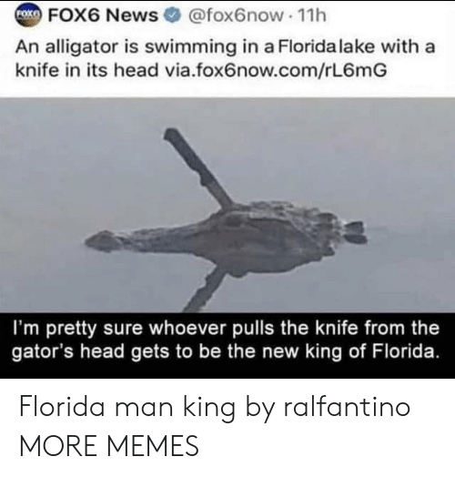 Dank, Florida Man, and Head: FOK  FOX6 News @fox6now 11h  An alligator is swimming in a Florida lake with a  knife in its head via.fox6now.com/rL6mG  I'm pretty sure whoever pulls the knife from the  gator's head gets to be the new king of Florida. Florida man king by ralfantino MORE MEMES