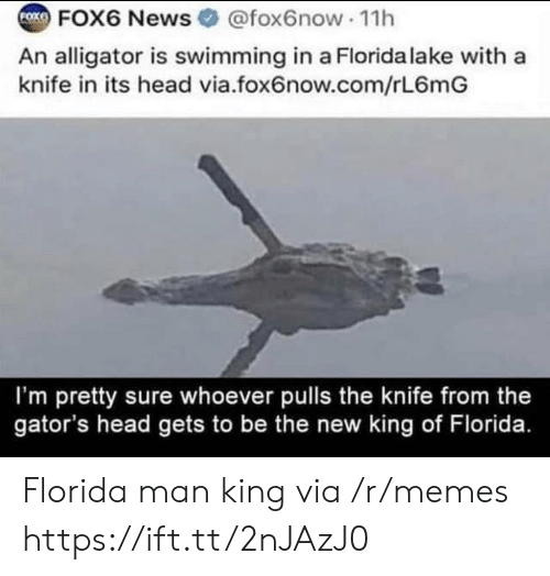 Florida Man, Head, and Memes: FOK  FOX6 News @fox6now 11h  An alligator is swimming in a Florida lake with a  knife in its head via.fox6now.com/rL6mG  I'm pretty sure whoever pulls the knife from the  gator's head gets to be the new king of Florida. Florida man king via /r/memes https://ift.tt/2nJAzJ0
