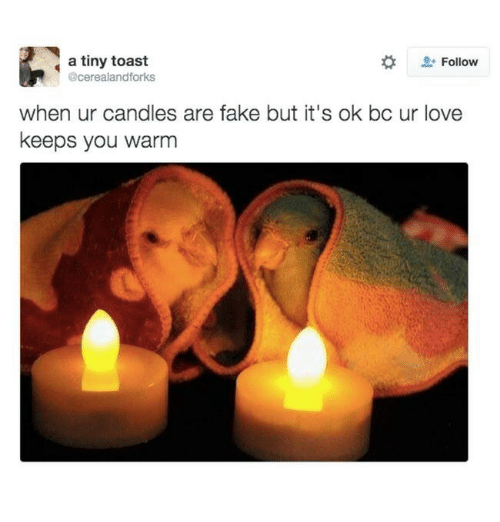 Fake, Love, and Toast: Follow  a tiny toast  @cerealandforks  when ur candles are fake but it's ok bc ur love  keeps you warm