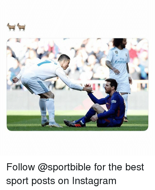 Instagram, Memes, and Best: Follow @sportbible for the best sport posts on Instagram