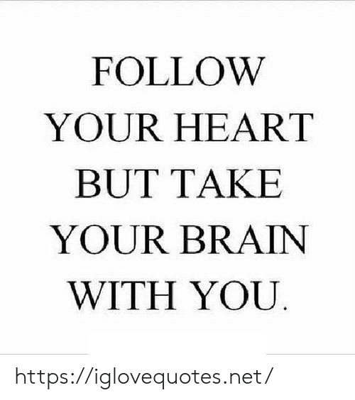 Follow Your: FOLLOW  YOUR HEART  BUT TAKE  YOUR BRAIN  WITH YOU https://iglovequotes.net/