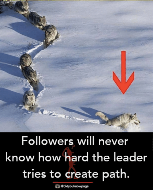 Memes, Never, and 🤖: Followers will never  know how hard the leader  tries to create path.  didyouknowpage