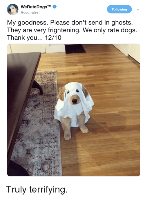 Dogs, Thank You, and Frightening: Following  @dog_rates  My goodness. Please don't send in ghosts  They are very frightening. We only rate dogs  Thank you... 12/10 Truly terrifying.