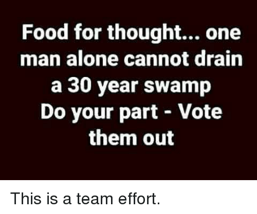 Being Alone, Food, and Memes: Food for thought... one  man alone cannot drain  a 30 year swamp  Do your part - Vote  them out This is a team effort.
