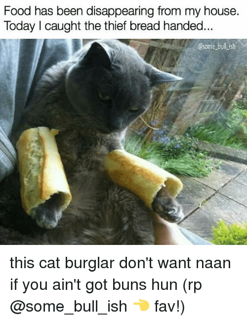 Food, Memes, and My House: Food has been disappearing from my house.  Today I caught the thief bread handed  @some bull ish this cat burglar don't want naan if you ain't got buns hun (rp @some_bull_ish 👈 fav!)
