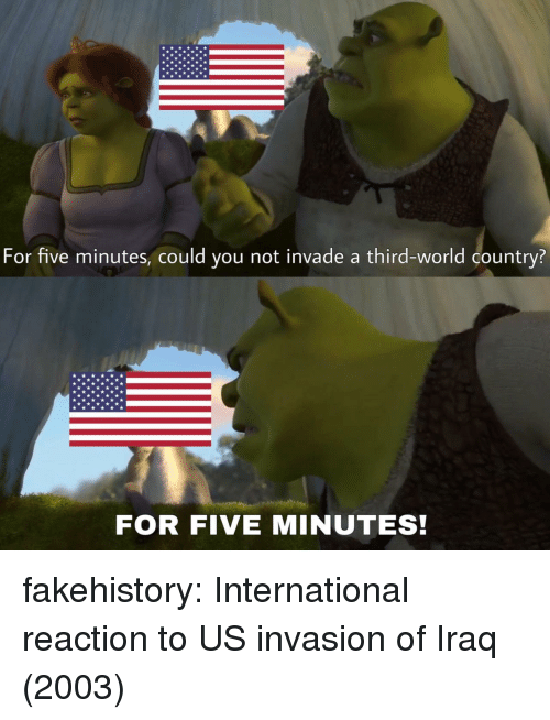 Could You Not: For five minutes, could you not invade a third-world country?  FOR FIVE MINUTES! fakehistory:  International reaction to US invasion of Iraq (2003)