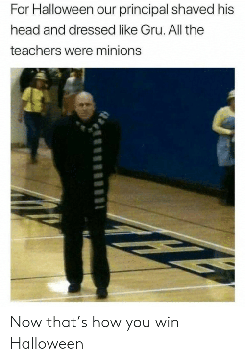 Gru: For Halloween our principal shaved his  head and dressed like Gru. All the  teachers were minions Now that's how you win Halloween