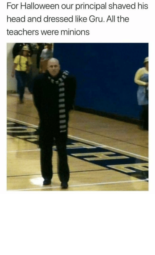 Gru: For Halloween our principal shaved his  head and dressed like Gru. All the  teachers were minions Now that's how you win Halloween by ashutosh__badetia MORE MEMES