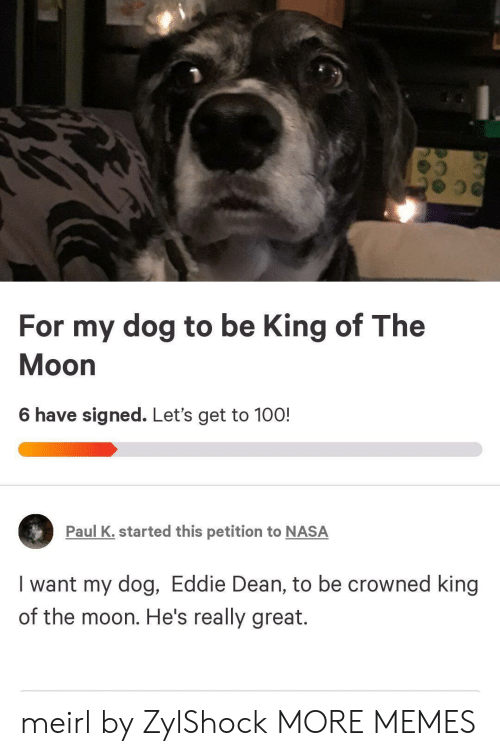 Dank, Memes, and Nasa: For my dog to be King of The  Moon  6 have signed. Let's get to 100!  Paul K. started this petition to NASA  I want my dog, Eddie Dean, to be crowned king  of the moon. He's really great. meirl by ZylShock MORE MEMES