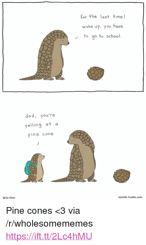 """Lizclimo Tumblr: for the last time!  woke uP, you have  to go to School  dad, you're  yelling at a  pine cone.  a d  Oliz climo  lizclimo.tumblr.com <p>Pine cones &lt;3 via /r/wholesomememes <a href=""""https://ift.tt/2Lc4hMU"""">https://ift.tt/2Lc4hMU</a></p>"""