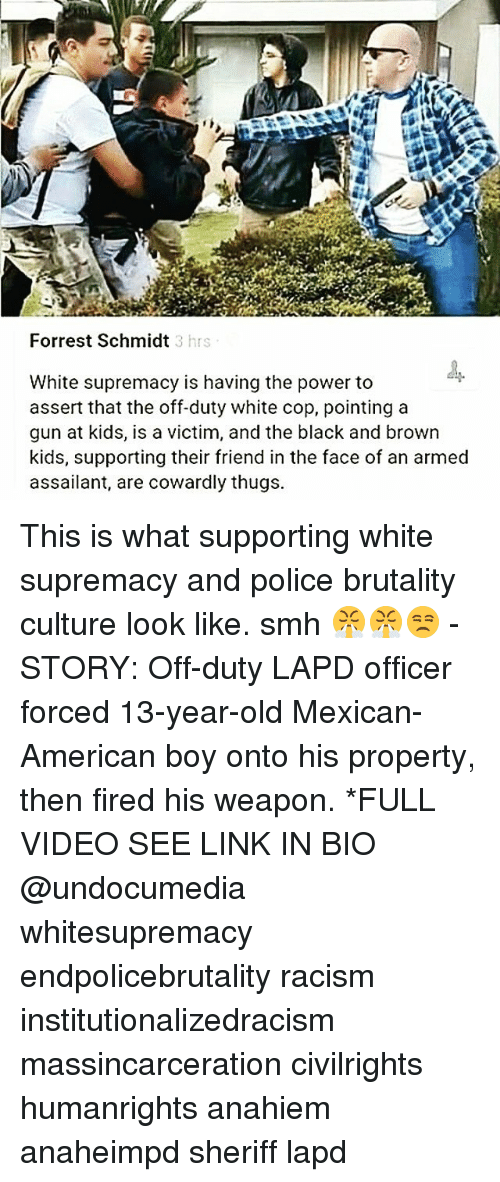 Assertive: Forrest Schmidt  3 hrs  White supremacy is having the power to  assert that the off-duty white cop, pointing a  gun at kids, is a victim, and the black and brown  kids, supporting their friend in the face of an armed  assailant, are cowardly thugs. This is what supporting white supremacy and police brutality culture look like. smh 😤😤😒 - STORY: Off-duty LAPD officer forced 13-year-old Mexican-American boy onto his property, then fired his weapon. *FULL VIDEO SEE LINK IN BIO @undocumedia ・・・ whitesupremacy endpolicebrutality racism institutionalizedracism massincarceration civilrights humanrights anahiem anaheimpd sheriff lapd