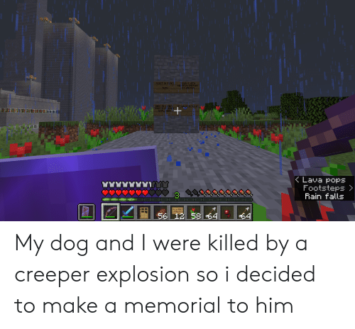 Rain, Dog, and Make A: FOUGHT WITH  HONOR ALONGSIDE  HIS MASTER  RESET IN FEACE  SVEN  DIED IN COMBAT  FROM A CREEFER  EXPLOSION  07.10.19-07.15.19  Lava popS  Footsteps  Rain falls  12  58  58 $4  $4  **** My dog and I were killed by a creeper explosion so i decided to make a memorial to him