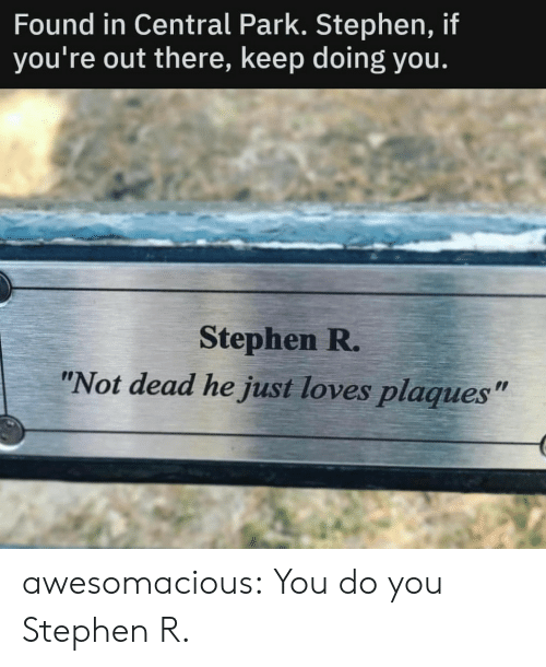 "Stephen: Found in Central Park. Stephen, if  you're out there, keep doing you.  Stephen R.  ""Not dead he just loves plaques"" awesomacious:  You do you Stephen R."