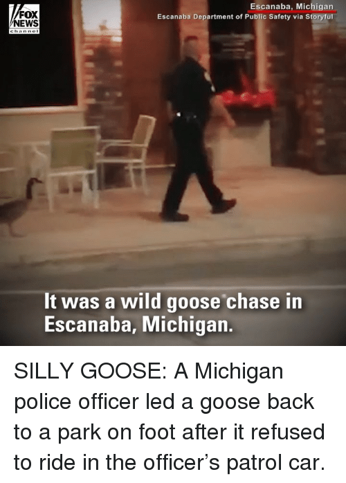 Memes, News, and Police: FOX  NEWS  Escanaba, Michigan  Escanaba Department of Public Safety via Storyful  It was a wild goose chase in  Escanaba, Michigan. SILLY GOOSE: A Michigan police officer led a goose back to a park on foot after it refused to ride in the officer's patrol car.