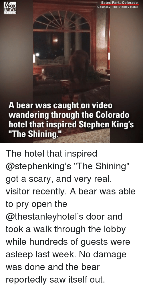 """Memes, News, and Saw: FOX  NEWS  Estes Park, Colorado  Courtesy: The Stanley Hotel  A bear was caught on video  wandering through the Colorado  hotel that inspired Stephen King's  """"The Shining."""" The hotel that inspired @stephenking's """"The Shining"""" got a scary, and very real, visitor recently. A bear was able to pry open the @thestanleyhotel's door and took a walk through the lobby while hundreds of guests were asleep last week. No damage was done and the bear reportedly saw itself out."""