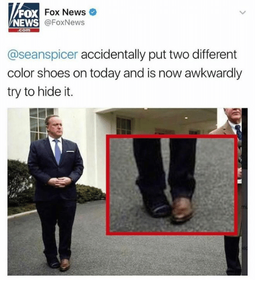 News, Shoes, and Fox News: Fox News  FOX  NEWS  @FoxNews  Com  aseanspicer accidentally put two different  color shoes on today and is now awkwardly  try to hide it.