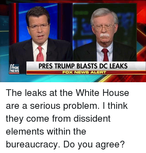 Memes, News, and White House: FOX  NEWS  PRES TRUMP BLASTS DO LEAKS  FOX NEWS ALERT The leaks at the White House are a serious problem.  I think they come from dissident elements within the bureaucracy.  Do you agree?