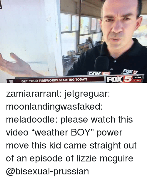 "lizzie mcguire: FOX5  GET YOUR FIREWORKS STARTING TODAY! zamiararrant:  jetgreguar: moonlandingwasfaked:  meladoodle: please watch this video ""weather BOY"" power move  this kid came straight out of an episode of lizzie mcguire   @bisexual-prussian"