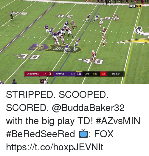 Memes, Cardinals, and Vikings: FOXNFL  CARDINALS 14 3 VIKINGS 2-21 10 2nd 4:23 02 3rd &9  3 STRIPPED. SCOOPED. SCORED.  @BuddaBaker32 with the big play TD! #AZvsMIN #BeRedSeeRed  📺: FOX https://t.co/hoxpJEVNIt
