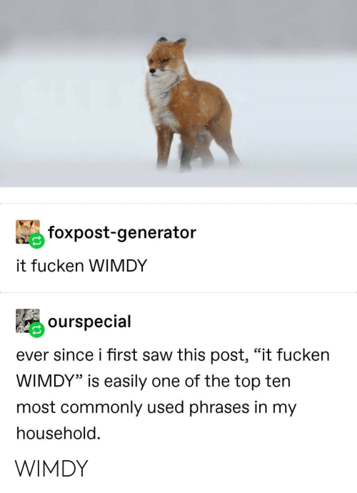"""Post It: foxpost-generator  it fucken WIMDY  ourspecial  ever since i first saw this post, """"it fucken  WIMDY"""" is easily one of the top ten  most commonly used phrases in my  household. WIMDY"""