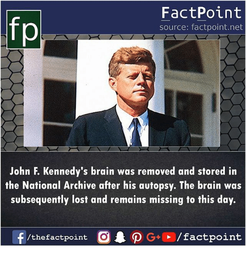Memes, Lost, and Brain: fp  FactPoint  source: factpoint.net  John F. Kennedy's brain was removed and stored irn  the National Archive after his autopsy. The brain was  subsequently lost and remains missing to this day.  f  /thefactpoint  AO G+  / factpoint