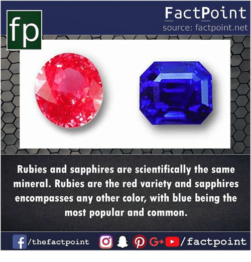 Memes, Blue, and Common: fp  FactPoint  source: factpoint.net  Rubies and sapphires are scientifically the same  mineral. Rubies are the red variety and sapphires  encompasses any other color, with blue being the  most popular and common.  f  /thefactpoint  CAO G+ / factpoint