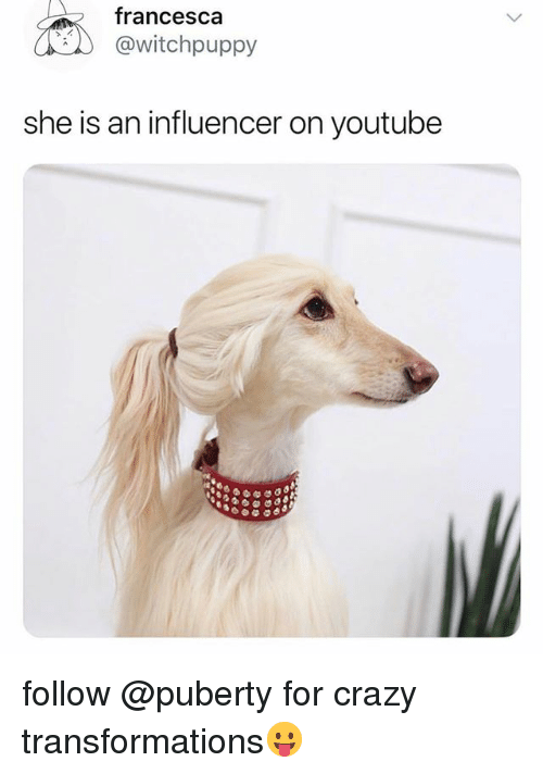 Crazy, Funny, and youtube.com: francesca  @witchpuppy  she is an influencer on youtube follow @puberty for crazy transformations😛