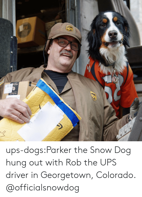 Dogs, Instagram, and Target: free listening ups-dogs:Parker the Snow Dog hung out with Rob the UPS driver in Georgetown, Colorado. @officialsnowdog