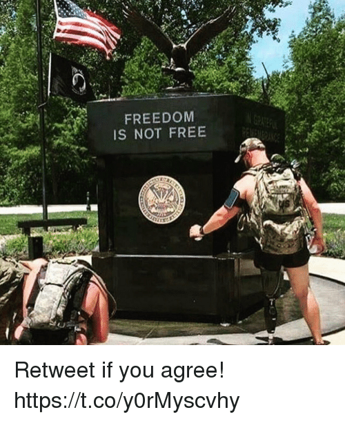 Memes, Free, and Freedom: FREEDOM  IS NOT FREE Retweet if you agree! https://t.co/y0rMyscvhy