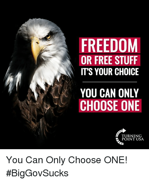 Choose One, Memes, and Free: FREEDOM  OR FREE STUFF  IT'S YOUR CHOICE  YOU CAN ONLY  CHOOSE ONE  TURNING  POINT USA You Can Only Choose ONE! #BigGovSucks
