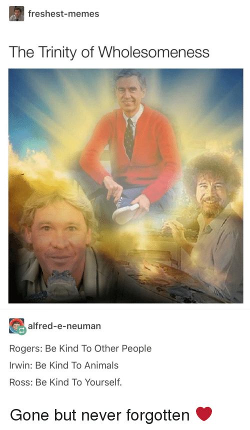 Animals, Memes, and Never: freshest-memes  The Trinity of Wholesomeness  alfred-e-neuman  Rogers: Be Kind To Other People  Irwin: Be Kind To Animals  Ross: Be Kind To Yourself. Gone but never forgotten ❤️