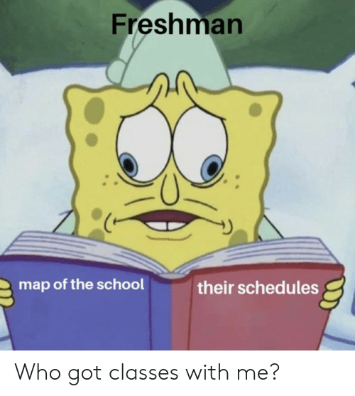 School, Got, and Map: Freshman  map of the school  their schedules Who got classes with me?