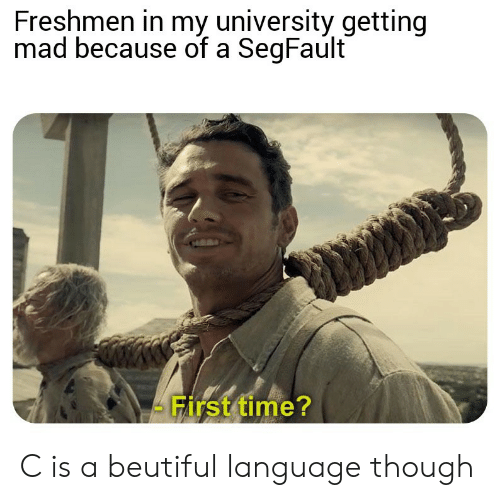 Time, Mad, and Language: Freshmen in my university getting  mad because of a SegFault  First time? C is a beutiful language though