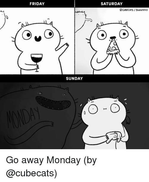 Friday, Memes, and Monday: FRIDAY  SATURDAY  CCUSECATS BUzzFEEO  SUNDAY Go away Monday (by @cubecats)